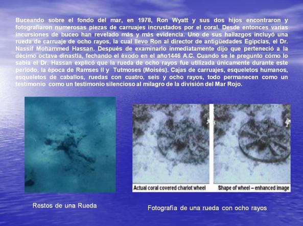 Hallazgos en el Mar Rojo