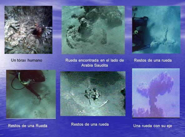 Ruedas de 8,6 y 4 rayos debajo del Mar Rojo
